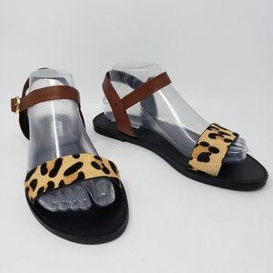 Steve Madden Donddi Leopard Saltwater Sandals